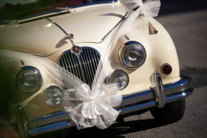 Wedding service Crippa NCC transfer Lake garda Area